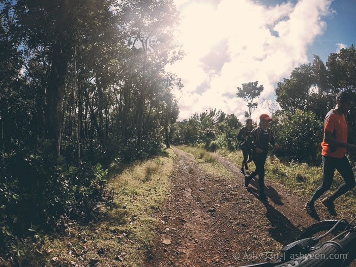 MTB Ride Macchabee Trail - Trailers