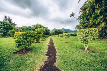 Monuments Day Apr 2017 Mauritius-State House Garden Alley