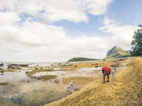 Adventure Trip: Le Morne - Low Tide