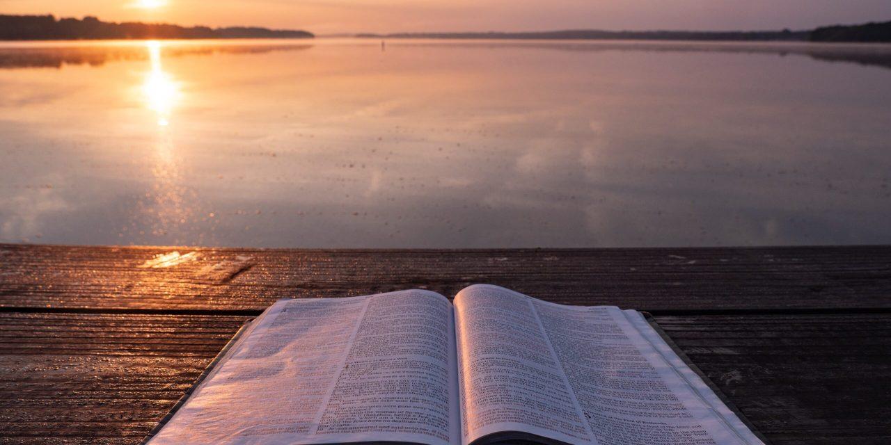 PALAU VS. LAUDATO SI (6): BIBLE