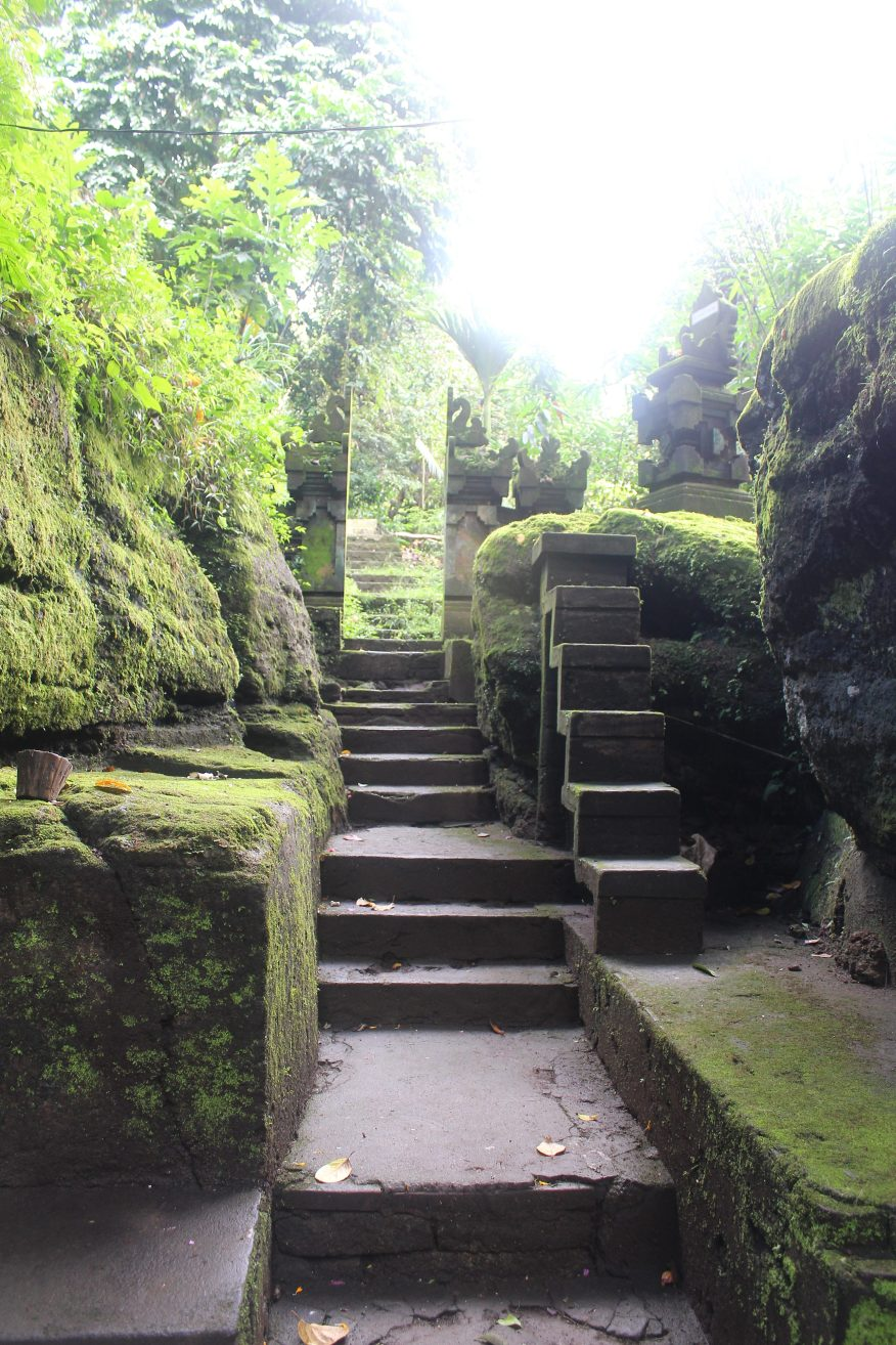 carved stone stairs through mossed covered stone wall pathway