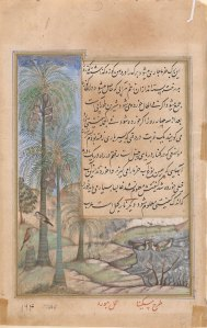 A palm tree and two birds with a long calligraphic inscription