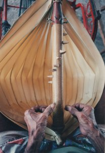 Weathered fingers pluck at the strings of a sasandu, from the player's perspective