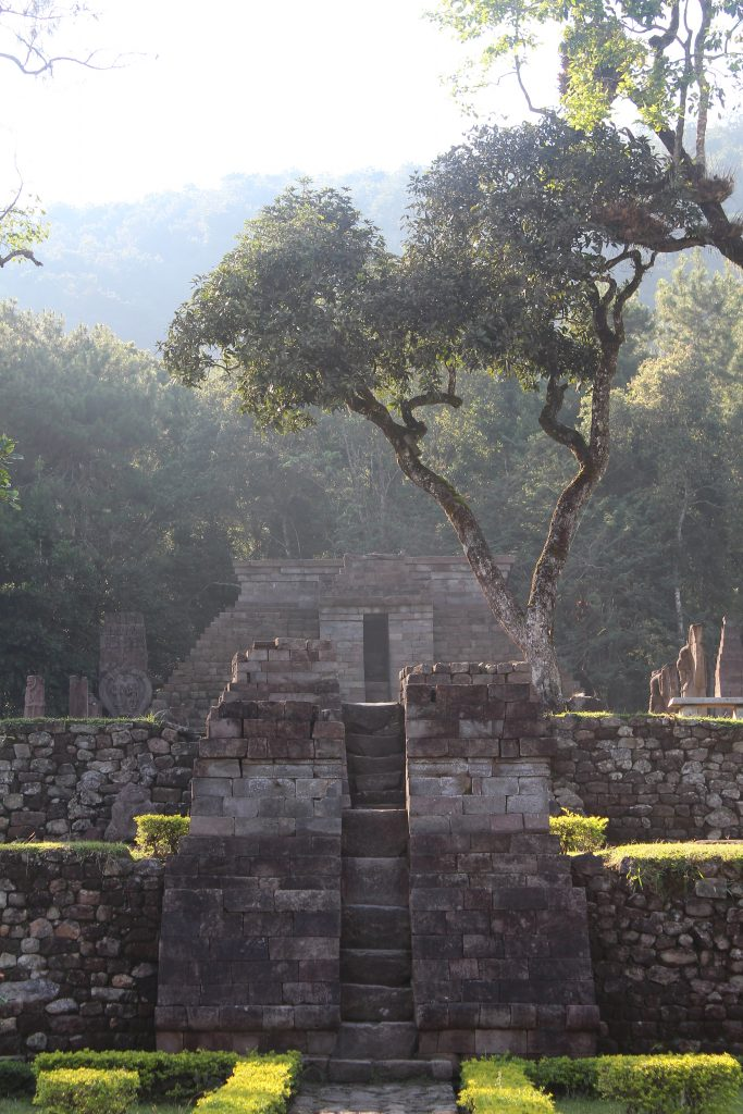Stepped temple built into forested mountainside