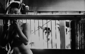A black and white photo of a nude figure looking out while another figure looks on behind them through a screen