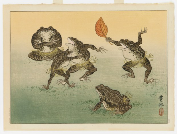 five toads dancing