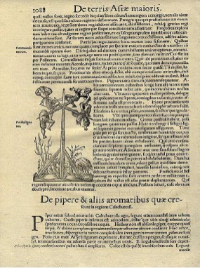 Page from a text with a figure of men hanging from hooks.