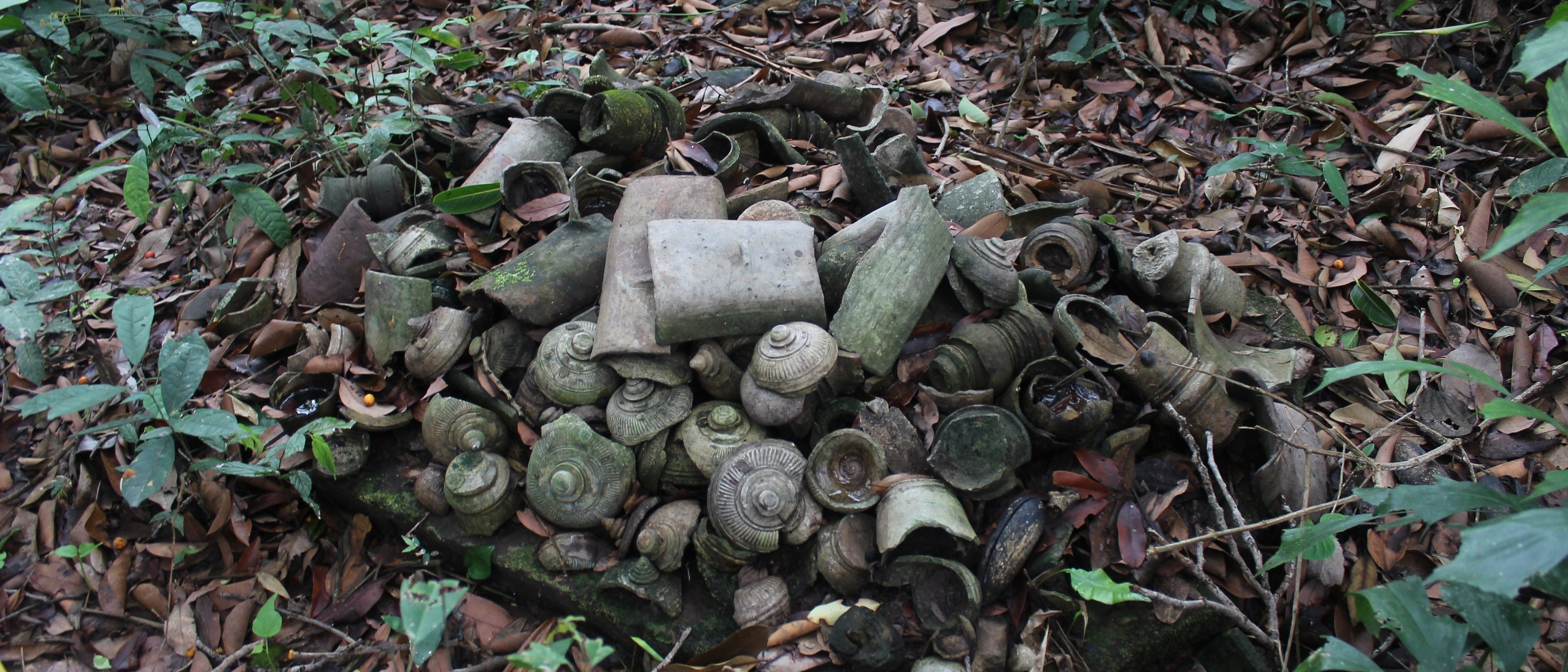 Pottery shards in a pile on leafy ground