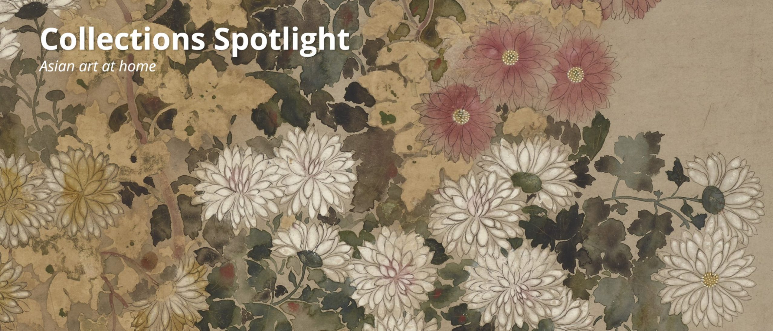 Collections Spotlight - chrysanthemums - detail from a painting of multicolored chrysanthemums