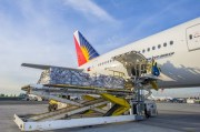 "Manila airport congestion having ""severe impact"" on PAL"