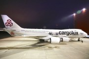 Belugas on board: Sea Life Trust, Cargolux join forces for epic beluga journey