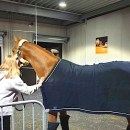 SkyCargo uplifts 91 horses for Longines Tour