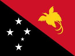 papua flag