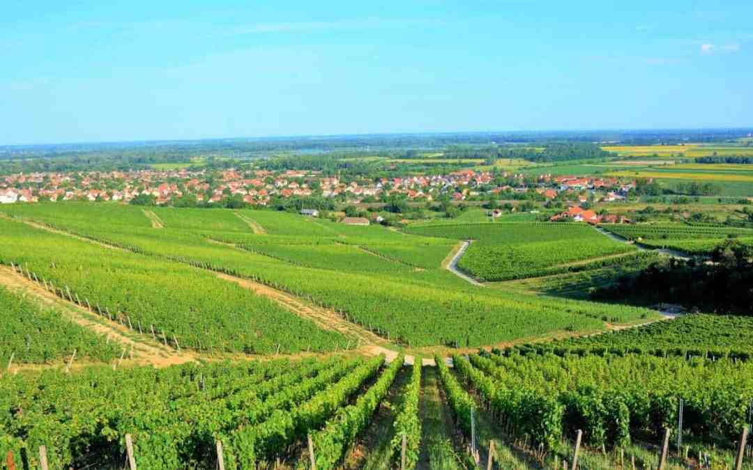 Meet Tokaj The Most beautiful Wine Town In Hungary