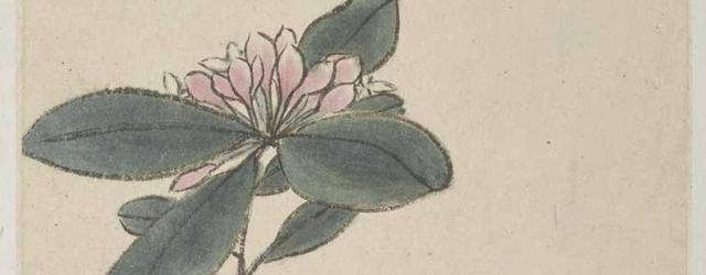 Lilac and Calligraphy by Bada Shanren (Zhu Da), Qing dynasty, circa 1690, two album leaves, ink and colour on paper, 20.1 x 14.6 cm