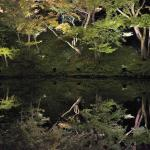 Kodaiji Temple, West Kyoto, with the famous reflecting pond