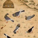 Pigeons feeding near a golden pigeon cote on a hillside, Mughal, Kashmirmid-17th century © The Fitzwilliam Museum, University of Cambridge