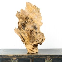Antique Chinese Camphor Wood Root Sculpture Art 30 inch Tall