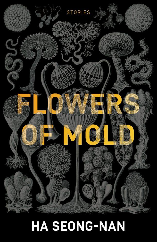 Flowers of Mold, Ha Seong-nan, Janet Hong (trans) (Open Letter, April 2019)
