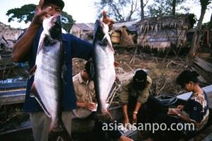 カンボジア トンレサップ湖・市場