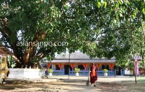 ミャンマー コータウンータニンダーリ 寺院