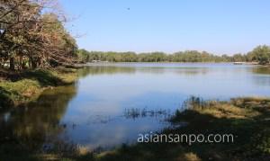 ミャンマー パテイン ロイヤル湖