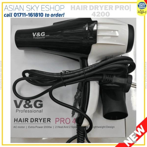 v&g Professional_Hair_Dryer_Model_no4200/4300