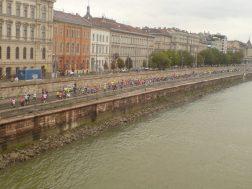 Tłum biegaczy na trasie maratonu