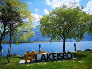 Jezioro Iseo i drzewa przy brzegu