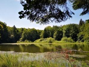 Jezioro Duszatyńskie w Bieszczadach
