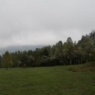 Beskid Mały, szlak naPrzełęcz Bukowską