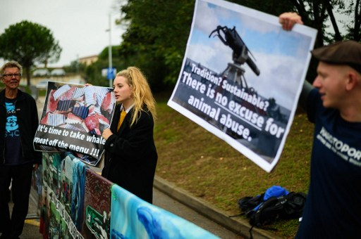 Protestors hold up a placards as they demonstrate during the 66th International Whaling Commission meeting in Portoroz, Slovenia.Photo: AFP/Jure Makovec