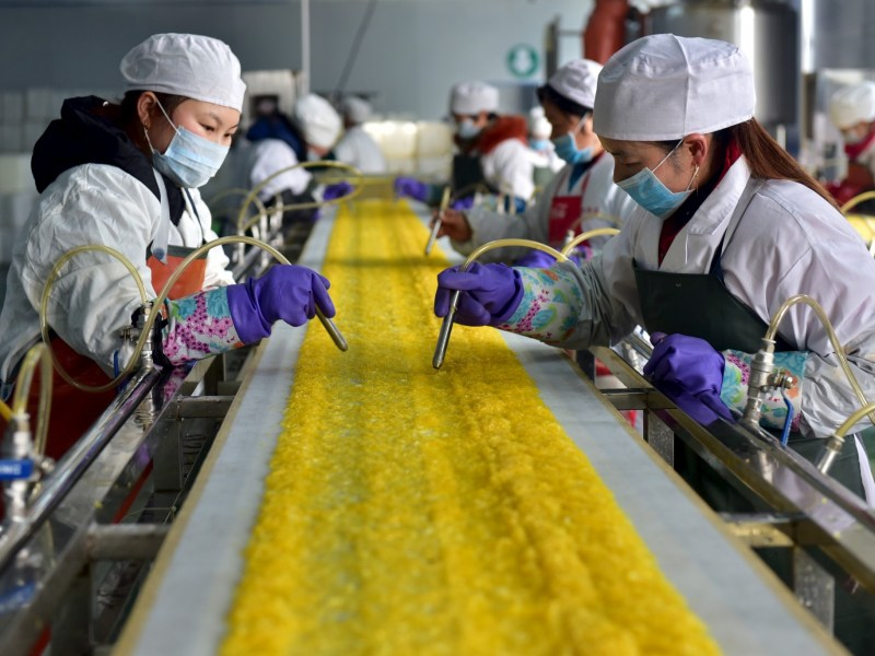 Employees work at a food processing factory in Yichang, Hubei province, January 17, 2016. Photo: Reuters/Stringer