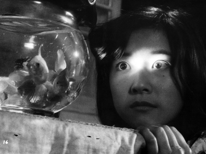 A still from Nobuhiko Obayashi's 1977 film House, which is about a house that starts eating its residents.