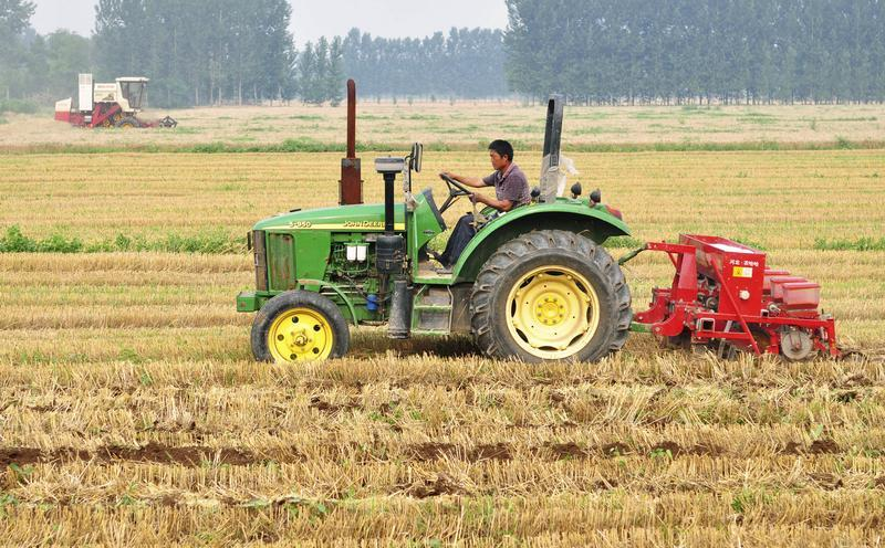A farmer drives a tractor in a wheat field in Zouping county, Shandong province. Photo: Reuters/China Daily