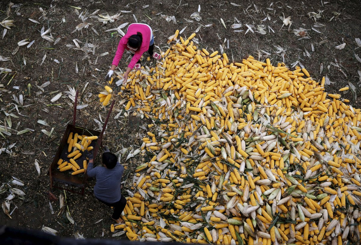 Eat bitter: headline real rates of GDP are hiding the true picture for China's agricultural sector. Photo: Reuters