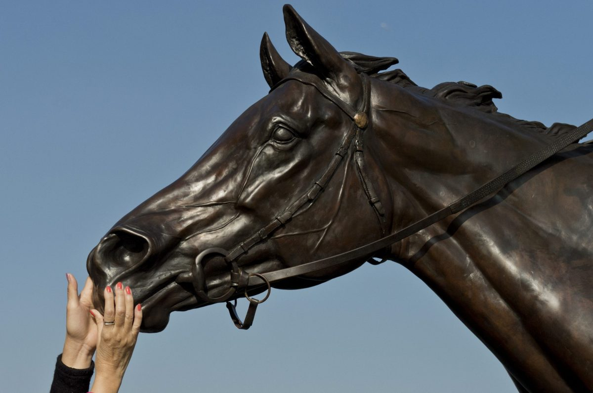 China is showing a growing fondness for all things equestrian. Photo: AFP / Alex Ogle