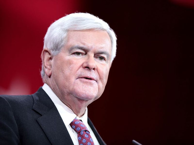 Former US Speaker of the House Newt Gingrich expressed his confidence that tax cuts can overcome obstacles in the Senate. Photo: Wikipedia Commons