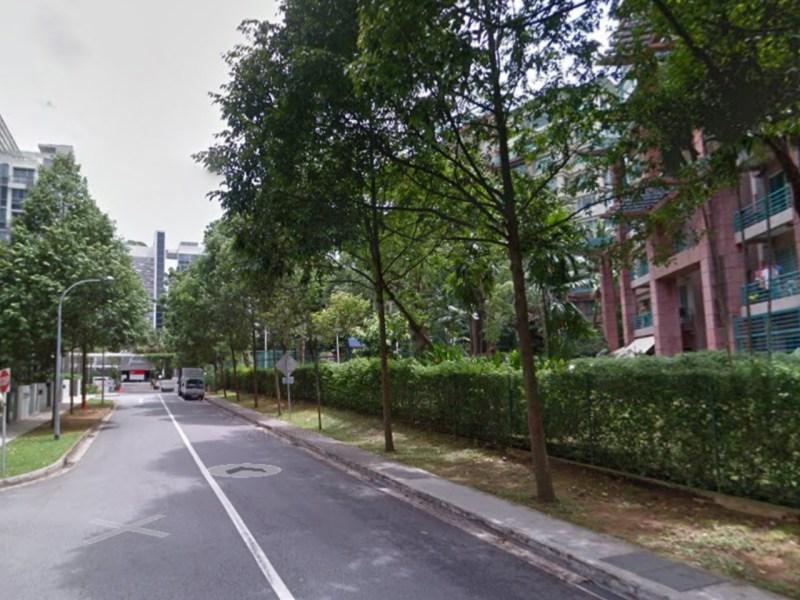Maplewoods, Bukit Timah Road, Singapore. Photo: Google Maps