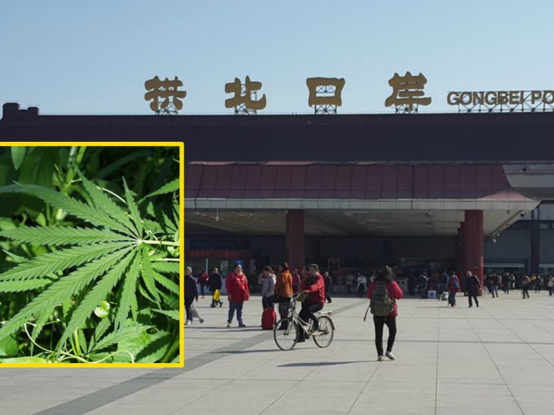 Two parcels containing cannabis were intercepted by officers at the Gongbei Port of Entry. Photo: Wikimedia Commons