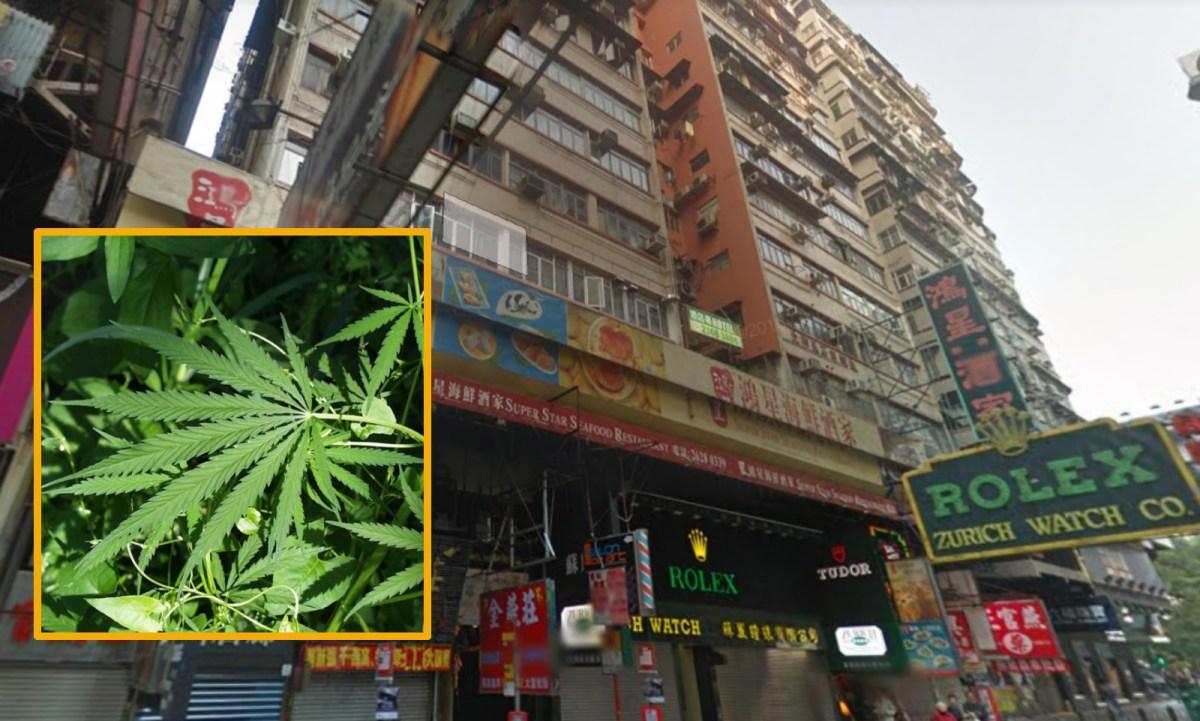 Tsim Sha Tsui Mansion, 83 to 97 Nathan Road, Tsim Sha Tsui, Kowloon Photo: Google Map