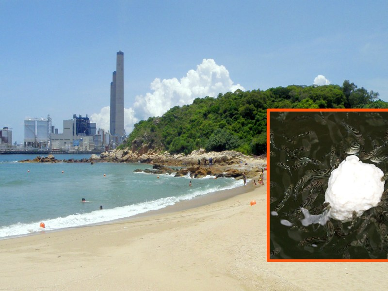 Eleven beaches in Hong Kong were closed because of a palm oil (inset) spill. Photos: Wikimedia Commons, Exploringlife, Sea Shepherd Global