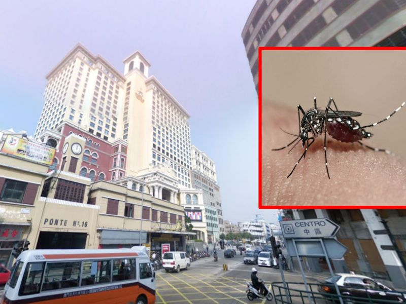 Health officials have advised neighbors near Ponte Cais No 16 to take precautions against mosquitoes after the woman was found to have dengue. Photo: Google Maps, Wikipedia, Muhammad Mahdi Karim