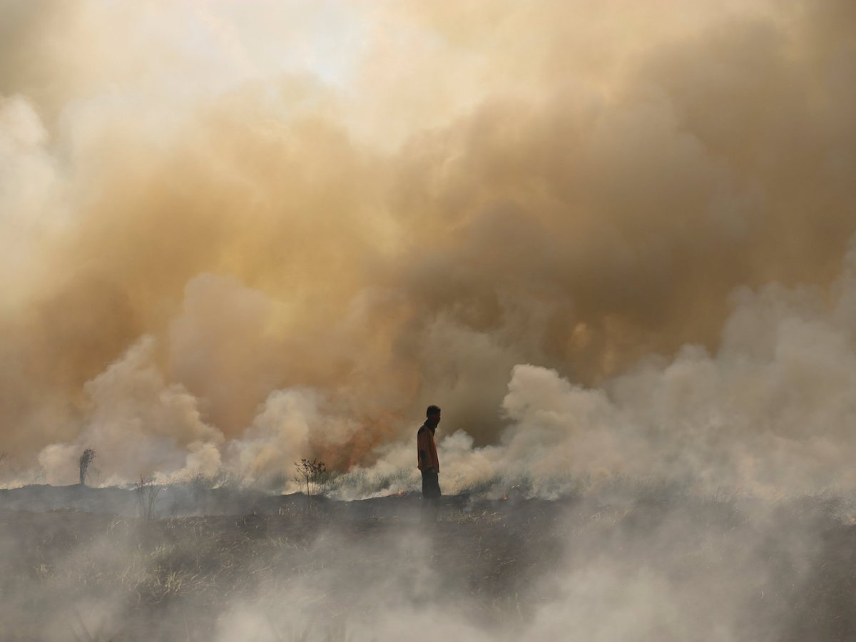 A disaster management officer walks towards a brush fire as other firefighters attempt to extinguish it near Palembang, South Sumatra, Indonesia September 21, 2017 in this photo taken by Antara Foto. Antara Foto/Nova Wahyudi via Reuters
