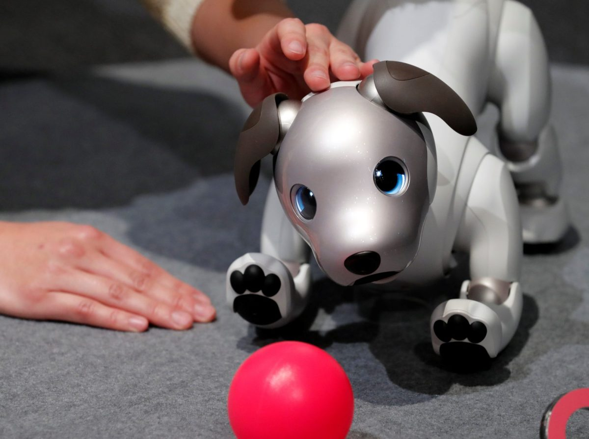 "A staff member handles Sony Corp's entertainment robot ""aibo"" at a demonstration in Tokyo, Japan, on November 1, 2017. Photo: Reuters / Kim Kyung-Hoon"