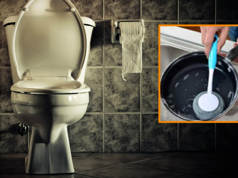 An employer said her domestic worker had once used a kitchen brush in toilet. Photo: iStock, Taobao.com