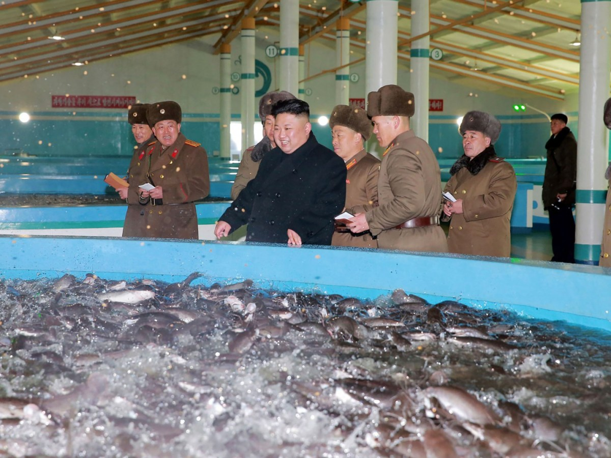 Photo: AFP / KCNA via KNS