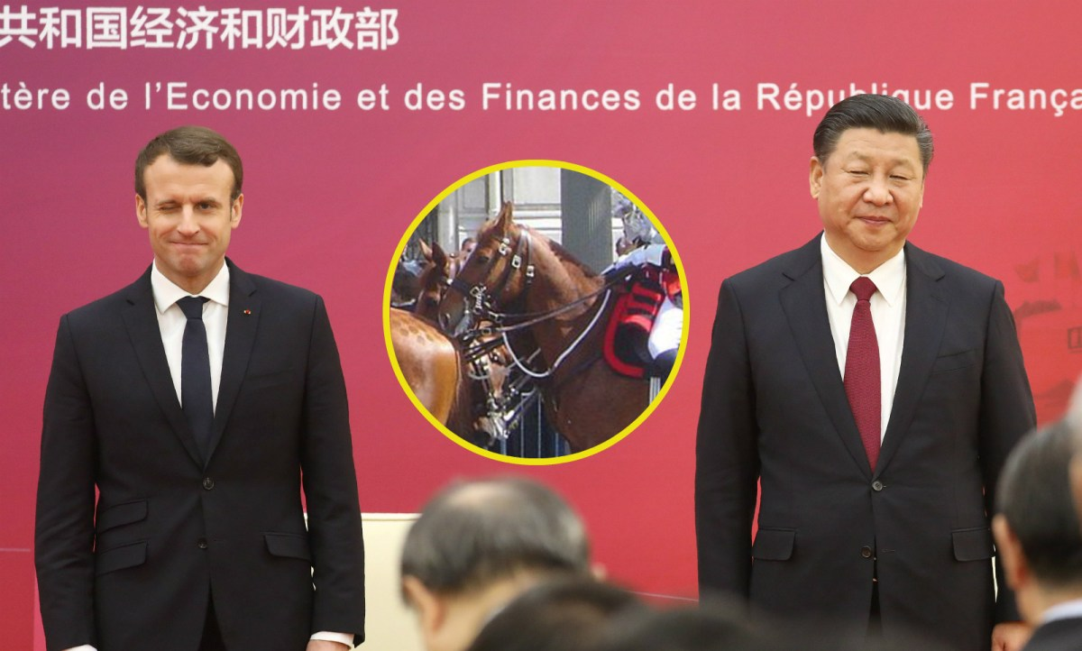 French President Emmanuel Macron (left) gave a horse to Chinese President Xi Jinping. Photos: Reuters, Wikimedia Commons, David Monniaux