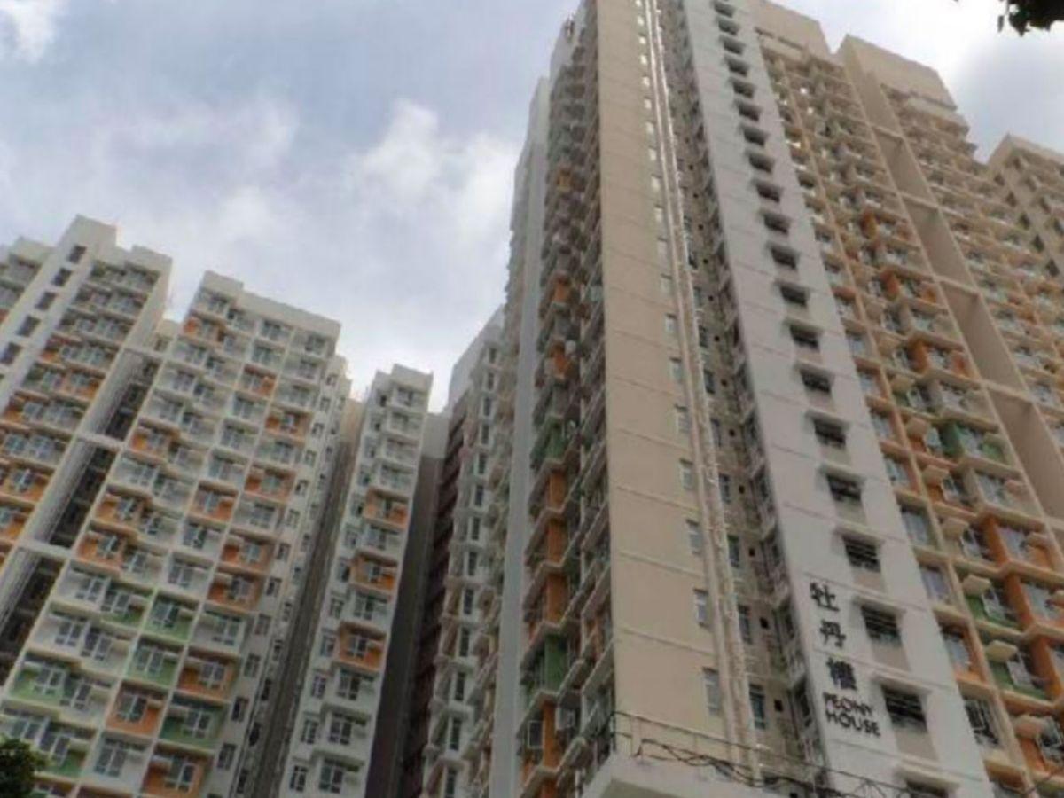 So Uk Estate in Cheung Sha Wan, Kowloon. Photo: HK Government