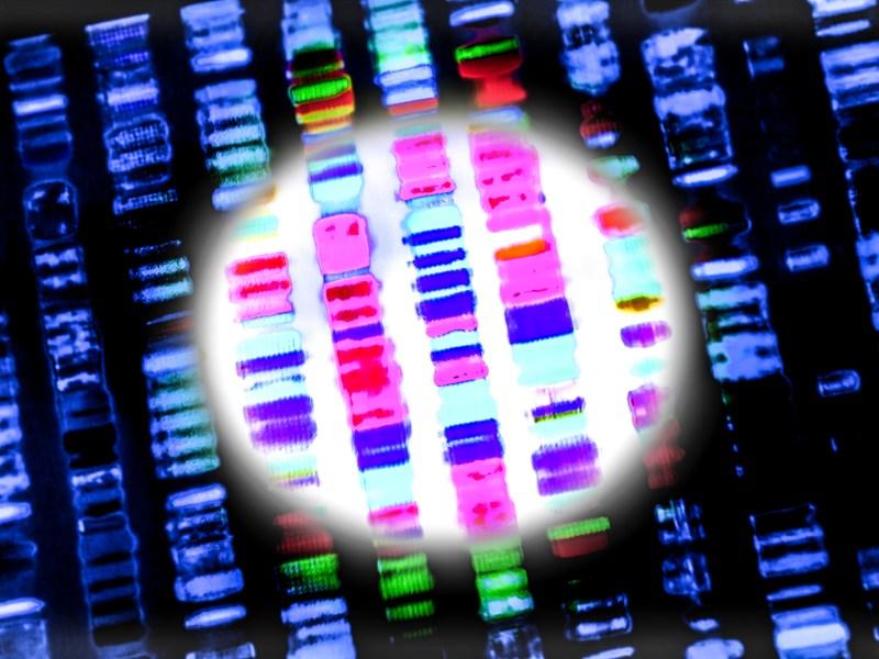 Graphic representation of the DNA sequence. Photo: iStock